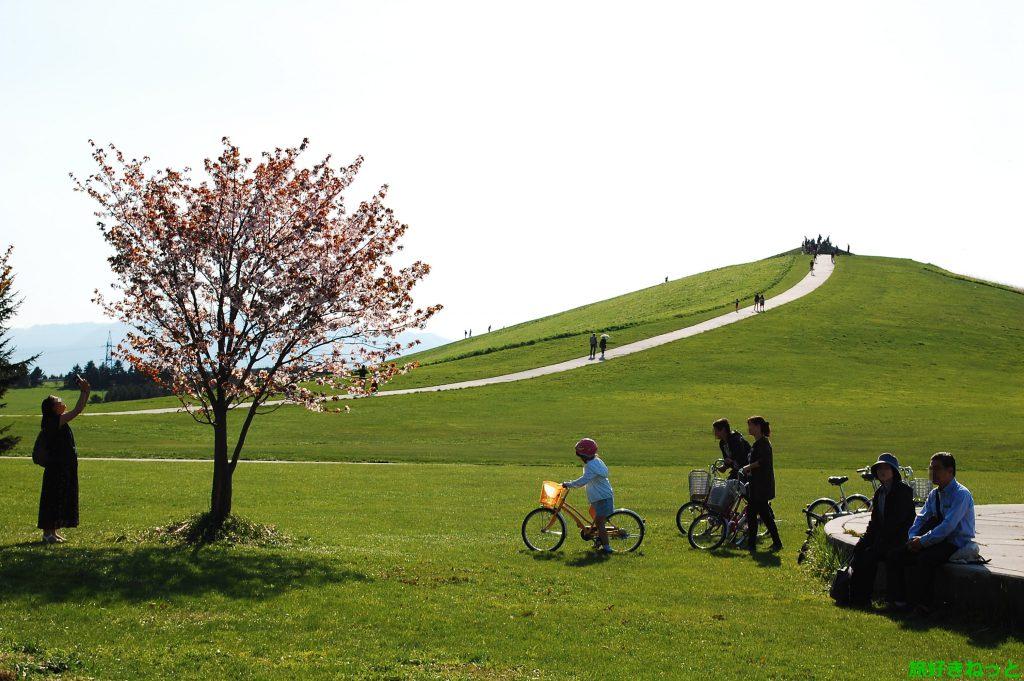 【モエレ沼公園 桜レポ】ゴールデンウィークに桜を見てきたよ!