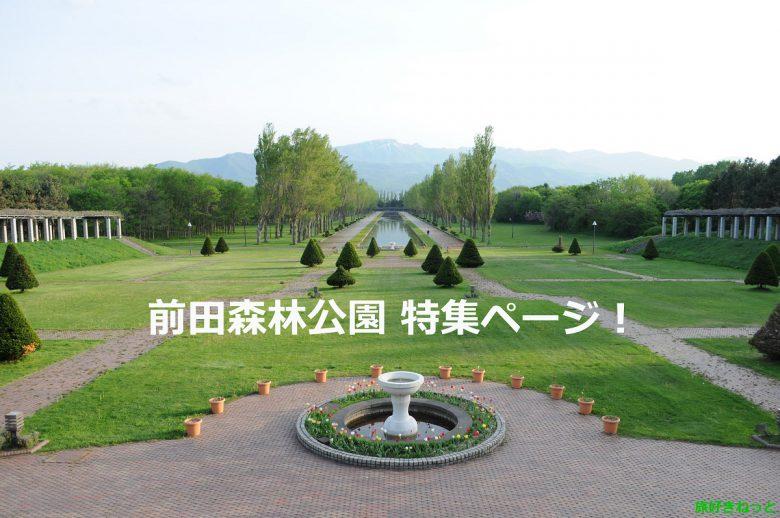 【前田森林公園】バーベキューや花見、桜、コスプレ撮影でも人気の公園を写真でレポ!