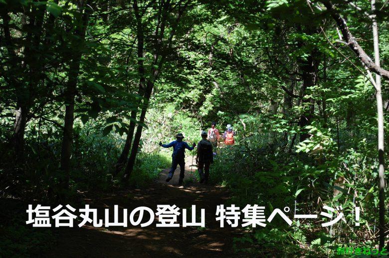 【塩谷丸山の登山体験】素人もプロも楽しめる低山を登山してびっくり