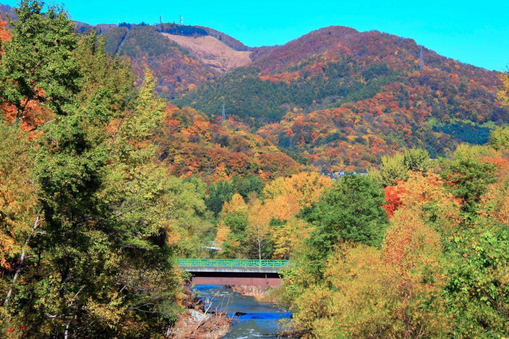 藻岩山の紅葉見頃は10月中旬~10月下旬『夜景と紅葉を楽しめる』