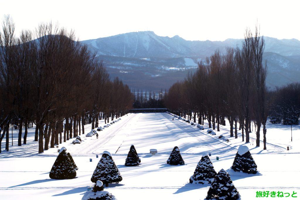 前田森林公園の『冬』も歩くスキー、犬の散歩、冬鳥の撮影など人も多かった