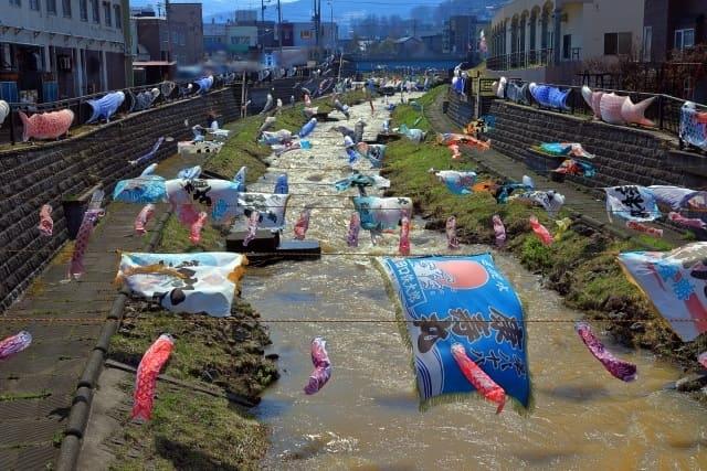 小樽『勝納川 鯉のぼり』の期間と飾られる場所のご紹介