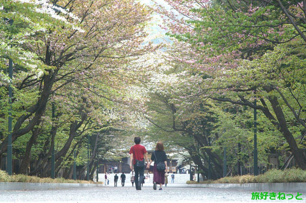 北海道神道青年協議会の神社フォトコンテストに応募しようとしたけどやめた理由
