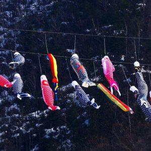 『定山渓温泉渓流鯉のぼり』は桜や春紅葉の見頃時期がおすすめ