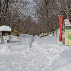 藻岩山「北の沢」登山口の場所、距離が短く初心者や冬の夜景撮影に
